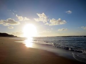 The sun cuts through the crisp dawn, the beach glistens like antique gold