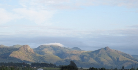 The mountains of Swaziland, soft and fresh after long awaited rain